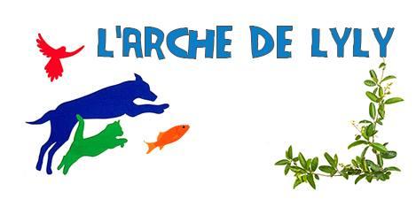 L'ARCHE DE LYLY